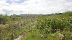 Teren Intravilan Curti Constructii Situat In Comuna Leresti, Jud. Arges